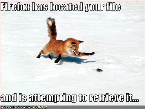 Firefox has located your file