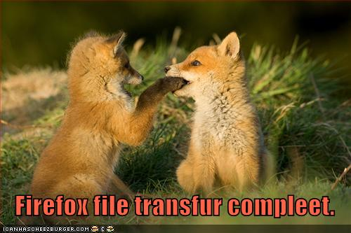 Firefox file transfer is complete