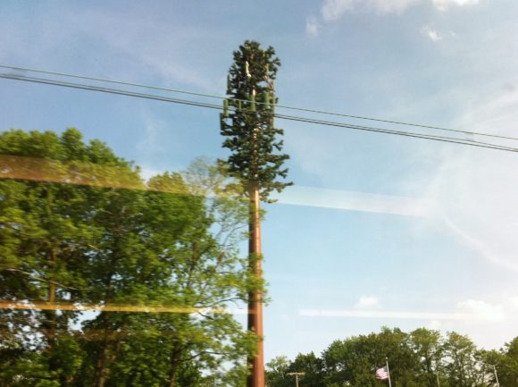 Day 146 - Camouflage cell tower