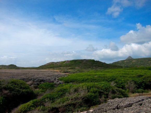 Day 172 - Curaçao Landscape
