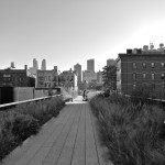Day 235 - Looking Down The High Line