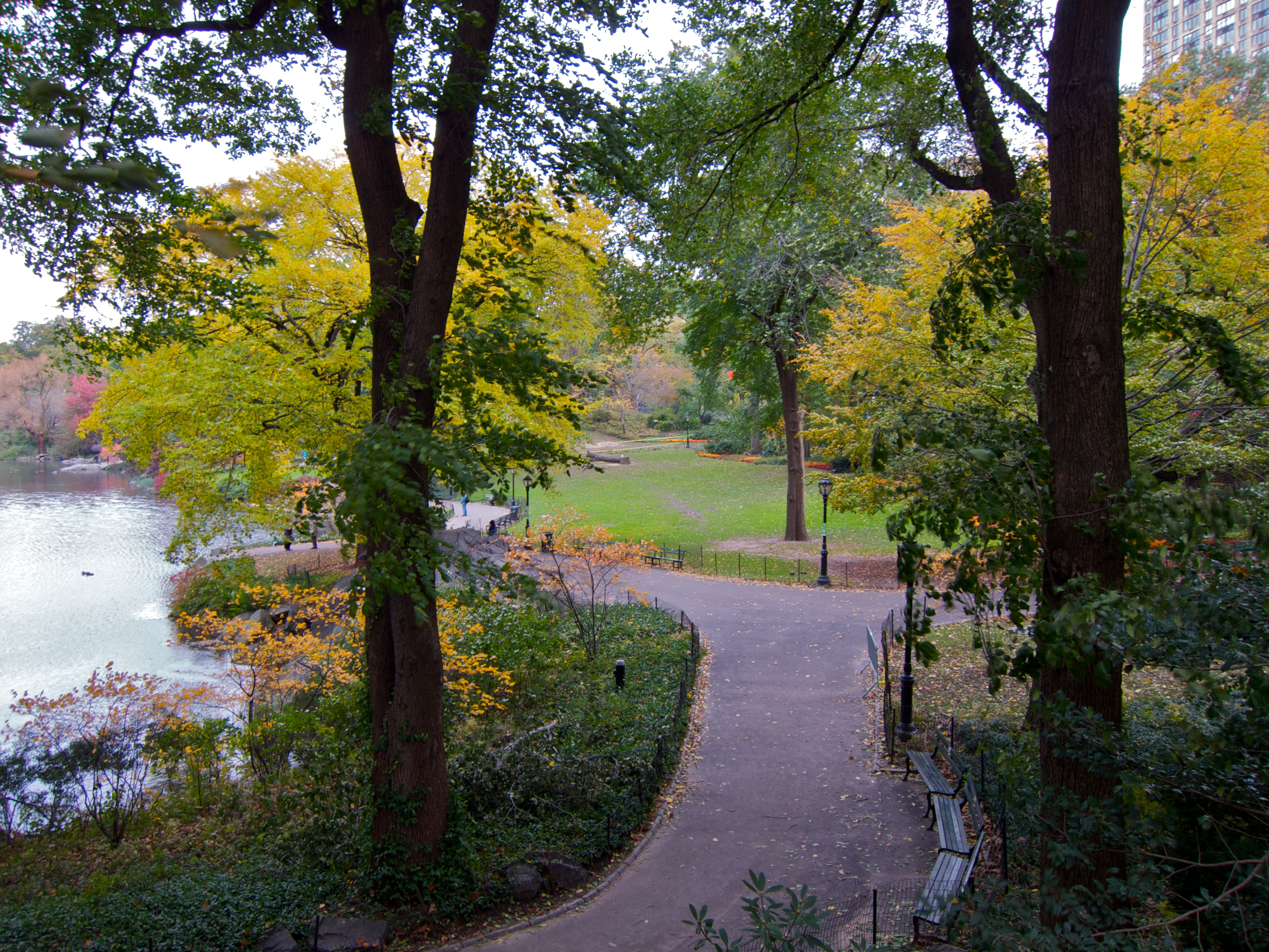 Day 316 - Fall In Central Park
