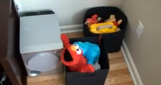 Elmo & Cookie Monster Adult Fun