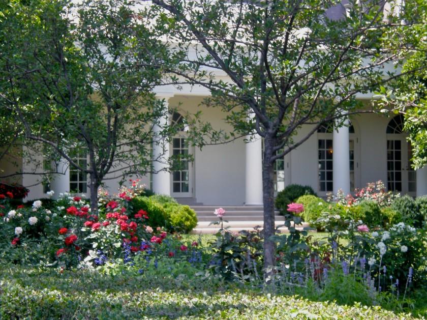White House Rose Garden The Outer Banks Nc Washington