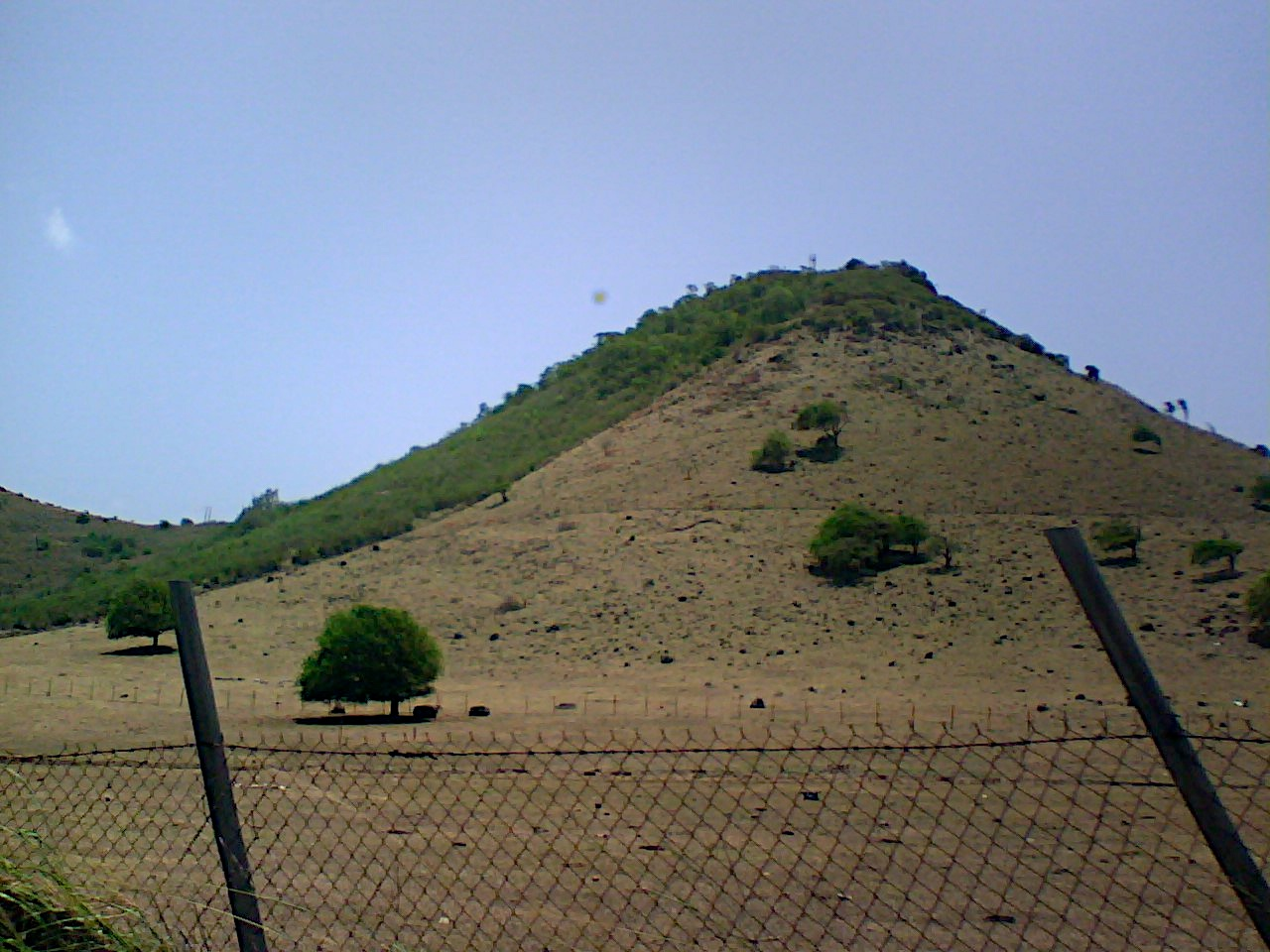 Looks like the cows only graze on one side of the hill.