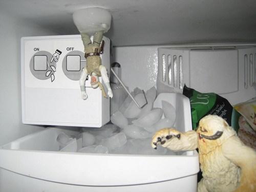 Luke Wampa Freezer