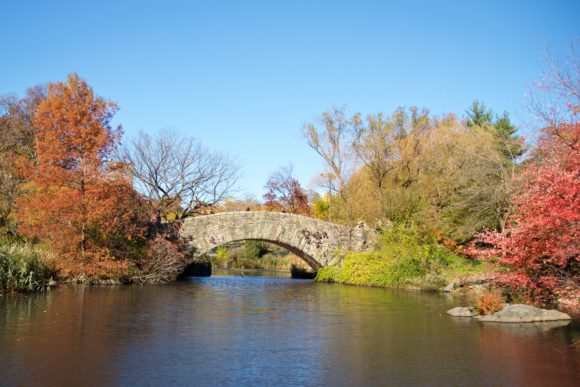 Gapstow Bridge 2