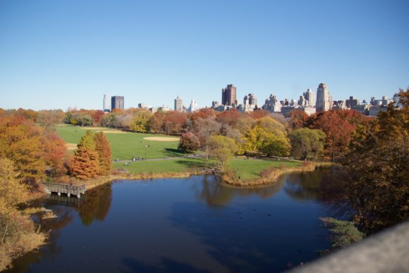 Central Park View Of Manhattan